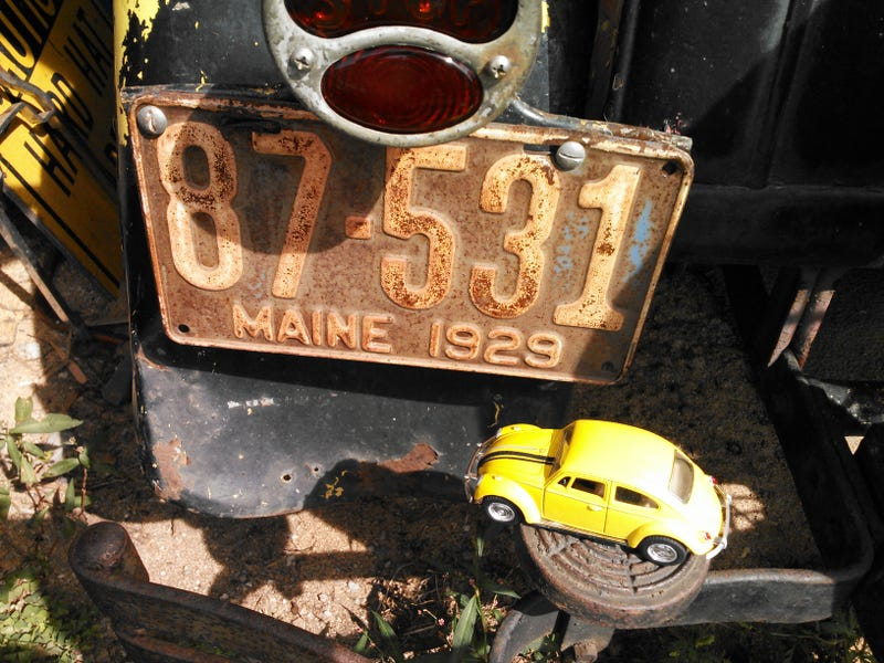Torchbug goes to Downeast Maine!