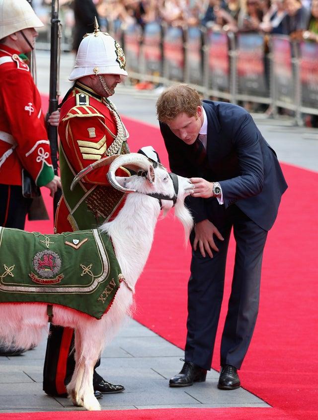 Prince Harry Meets Best Friend