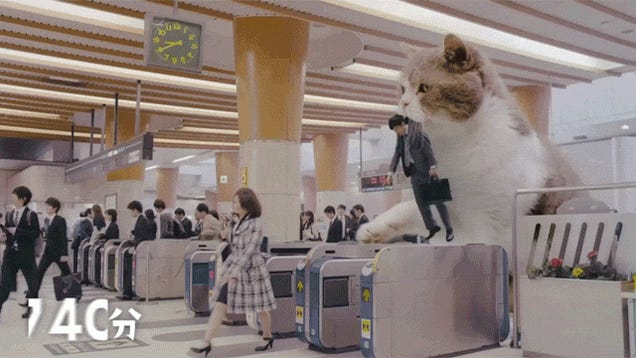 I Want a Giant Cat To Carry Me To Work, Too