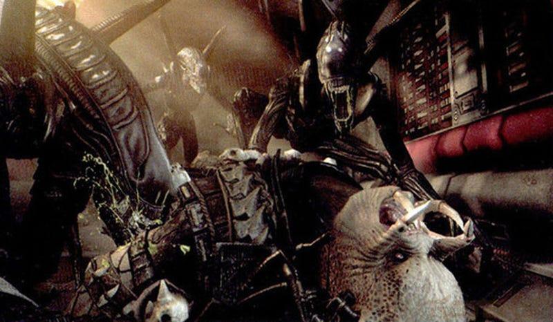 More Details On New Aliens vs Predator