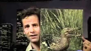 """Kirk Cameron's """"Crocoduck"""" Came Back To Bite Him In The Ass"""