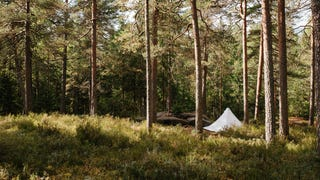 Wild Camping in Oslo (And Everywhere Else I Go)