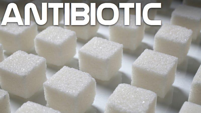Add sugar to your antibiotics and crush superbugs