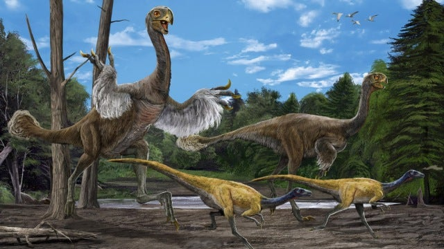 Lice are as old as the dinosaurs...and this could change everything
