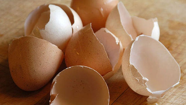 Keep Slugs and Pesky Insects Out of Your Garden with Egg Shells