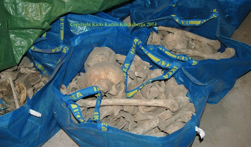 Swedish Woman Finds IKEA Bags Filled With 80 Human Skeletons