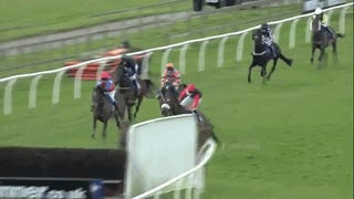 Jockey Picks Absolute Worst Time To Jump Off His Horse