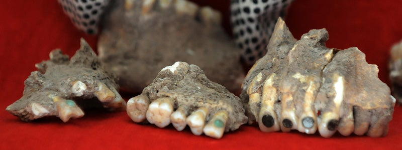 Ancient Mayan Tooth Bling Stolen - and Returned by Mystery Benefactor