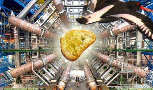 Large Hadron Collider Overheats Due To Dropped Chunk Of Bread