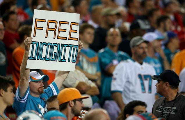 What Everyone Missed In The Report On The Dolphins ...