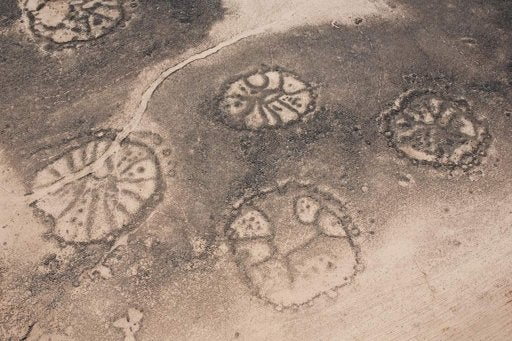 Who created these huge, mysterious wheel patterns in the Mideast thousands of years ago?