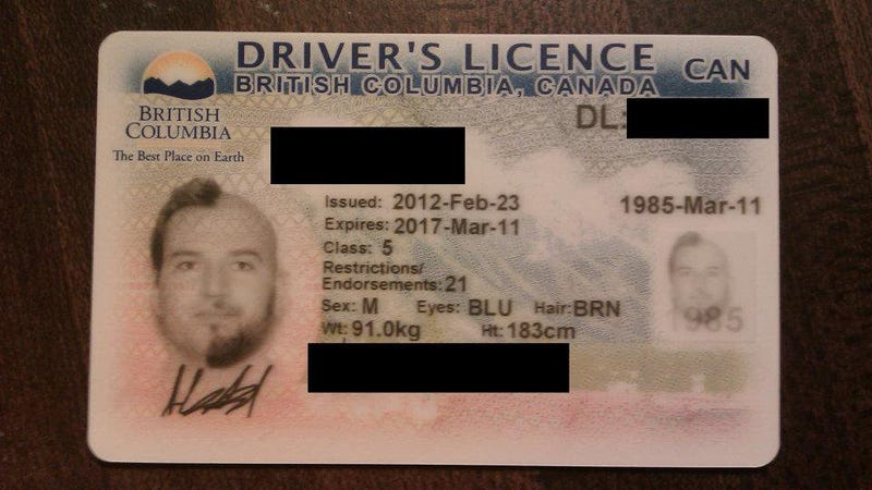 The World's Greatest Driver's License Photo