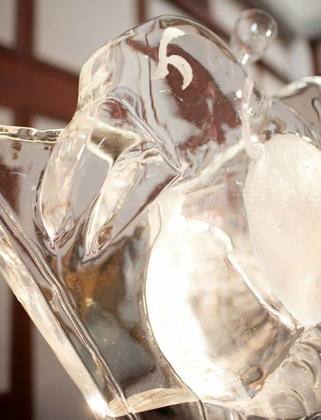 Bride Surprises Groom With Penguins Ice Luge