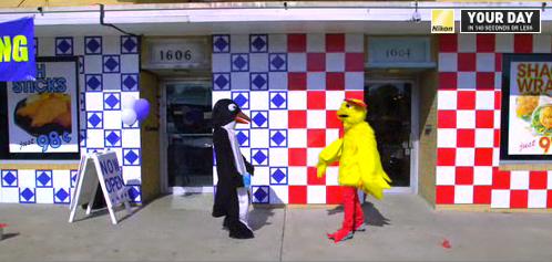 The Winner of the Nikon Twitter-Inspired Film Festival: Chicken vs. Penguin