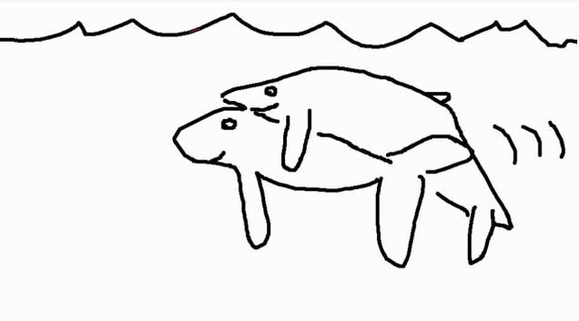 Here Is (a Drawing GIF of) the World's First Picture of Humpback Whales Humping, Tenderly