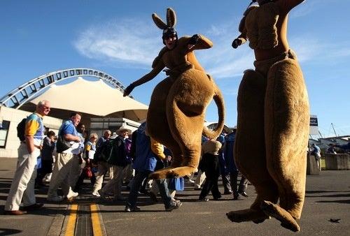 Kangaroo Sport