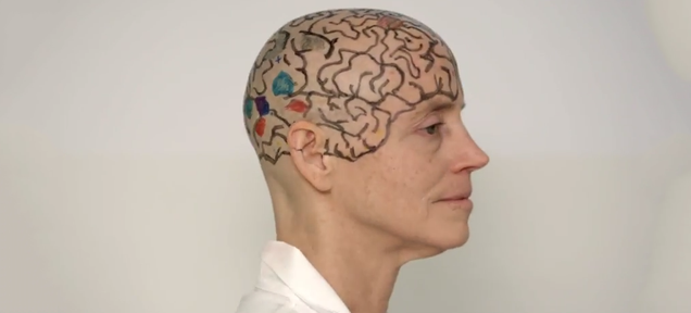 An MIT Professor Shaved Her Head To Teach You Neuroanatomy