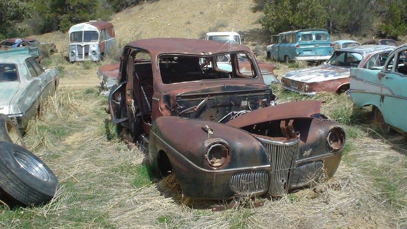 Twelve rusty cars