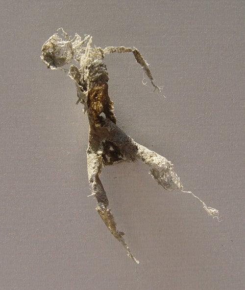 Dust Art Gallery