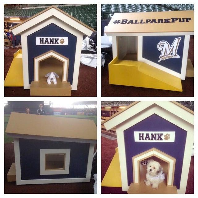 Hank The Dog Got A Hank House
