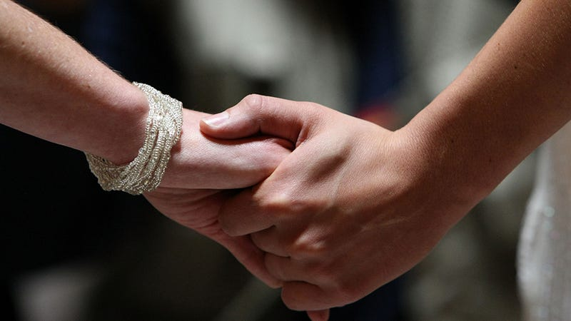 Lawmaker Compares Same-Sex Marriage Benefits to Subsidizing Pets