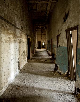 An abandoned quarantine island, in plain sight of New York City
