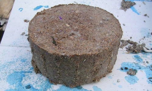 Compress Sawdust and Paper Pulp into a Fuel Briquette