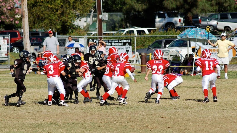 The Coach Of The Junior Pee Wee Red Cobras Has Been Suspended After Allegations Of A Pop Warner Football Bounty Program