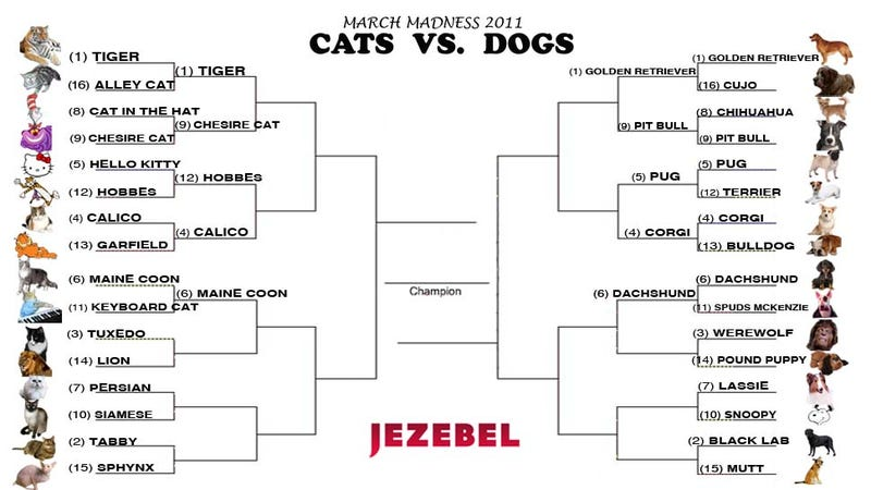 Cats vs. Dogs: Oh, How The Mighty Have Fallen