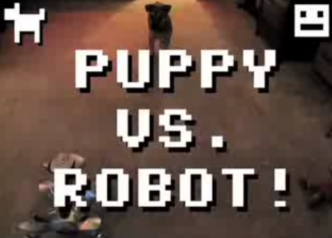 When Puppy Meets Roomba, Things Get Spicy