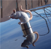Weekend Project: Make your own hood ornament