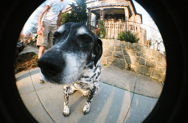 How Do I Pick the Right Lens for My DSLR?