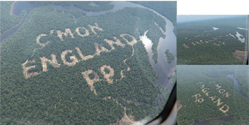 Cutting down the rainforest...