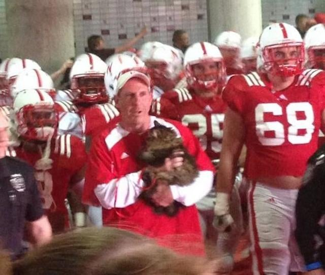 Bo Pelini Leads His Team Out The Tunnel With A Cat