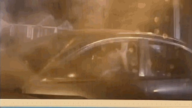 Watch This K9 Cop Push His Dog Into Surrendering Suspect's Car Window