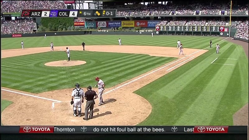 Today's Diamondbacks-Rockies Game Was Delayed Due To Bees. Lots Of Bees. [UPDATE]