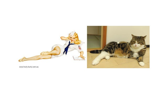 Have You Seen Cats That Look Like Pinup Girls?