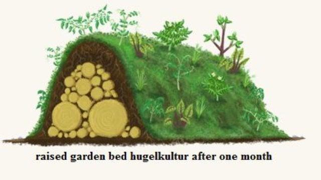 Hugelkultur Can Create Irrigation-Free Garden Beds