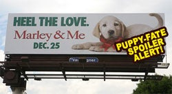 Desperate Fox Experiments With Unique Spoiler Campaign For 'Marley & Me'