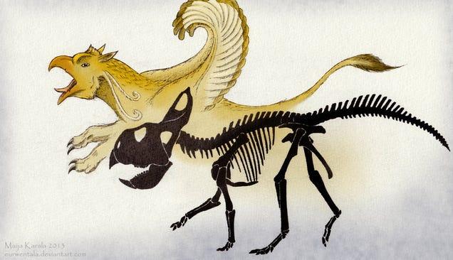 Nós descobrimos os restos fossilizados de um Griffin