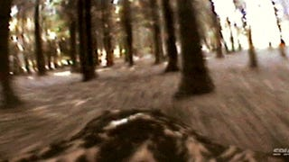Video: Incredible view of a hawk flying through a forest of trees