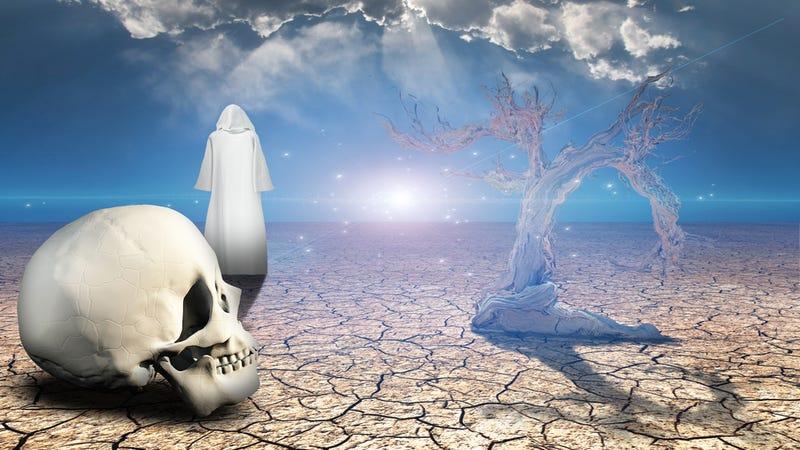 "Zen Koans Explained: ""The Dead Man's Answer"""