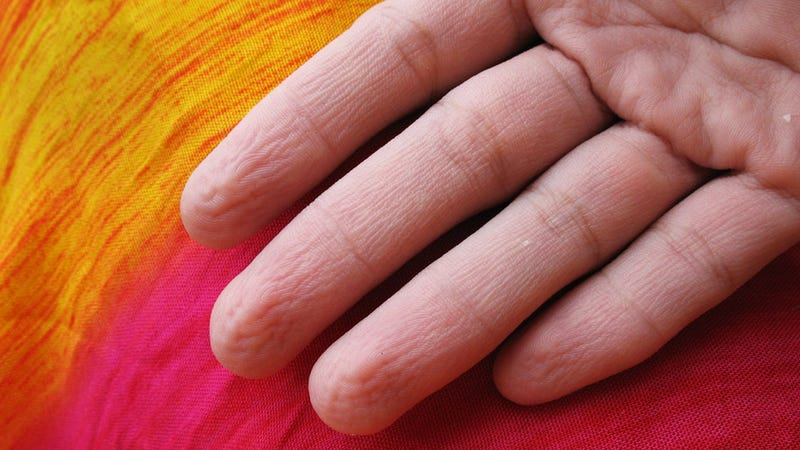 We Now Know Why Fingers Wrinkle in Water