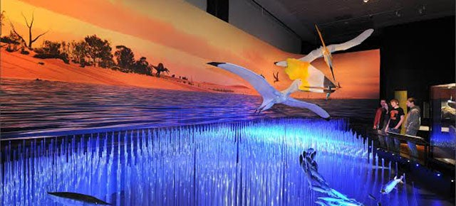 Chat With a Paleontologist About Pterosaurs and the AMNH's New Exhibit