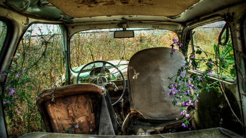 Photographs of a Mellow Car Purgatory