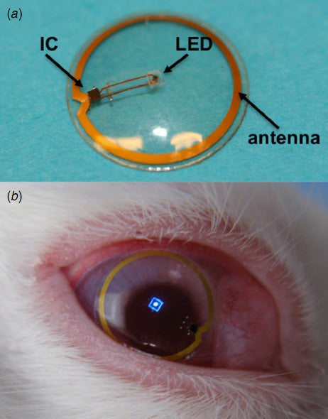 Engineers have created an LED display you can wear like a contact lens