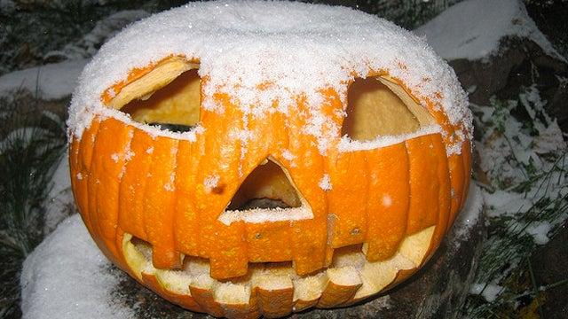 Snow on Halloween? The Horror!