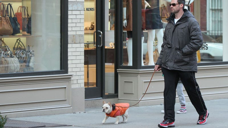 Hugh Jackman & Dog Put On Jackets, Go For A Stroll