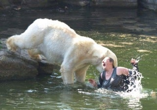 Woman Mauled By Polar Bear After Jumping Into Pit At Berlin Zoo
