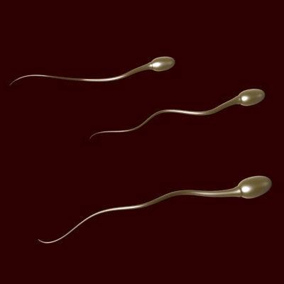 Sperm Wars.
